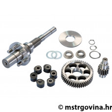 GEAR SET W/FLEXIBLE COUPLING PIAGGIO